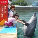 【ふるさと納税】イルカとふれあい体験チケット