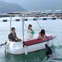 【ふるさと納税】イルカとふれあい満喫チケット