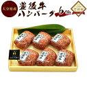 【ふるさと納税】豊後牛ハンバーグ 160g×6個セット 大分...