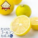 【ふるさと納税】 たけたゴールデンカボス 4kg(50玉〜60玉程度) かぼす 黄色 柑橘 果物 みかん フルーツ 大分県産 九州産 送料無料