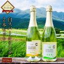 【ふるさと納税】久住ワイナリー 白スパークリング 2本セット 日本ワイン 720ml デラウェアスパークリング 甘口 ナイアガラドライスパークリング 辛口 白ワイン スパークリング お酒 送料無料 日本 国産 セット ギフト 贈り物