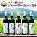 【ふるさと納税】久住ワイナリー ワイン屋さんのブルーベリージュース 5本 ブルーベリージュース ジュ...