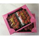 【ふるさと納税】甘熟いちご「紅ほっぺ」