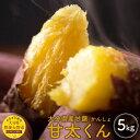 【ふるさと納税】大分県産甘藷 甘太くん 5kg 大分県産 紅...