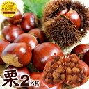 【ふるさと納税】大分県産 栗 2kg 生栗 国産 果物 フル...
