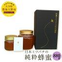 【ふるさと納税】日本ミツバチの純粋蜂蜜 880g (220g...