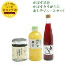 【ふるさと納税】かぼす果汁 500ml かぼすとうがらし 1...
