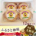 【ふるさと納税】No.036 手づくりジェラート詰合せ モナカアイス 12個セット...