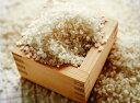 【ふるさと納税】とがずに炊ける大分県産無洗米ひのひかり5kg...