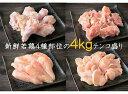 【ふるさと納税】驚きのテンコ盛り!大分県産鶏(4種部位 / ...