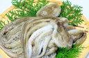 【ふるさと納税】漁師直送!天然なま蛸/冷凍1.2kg