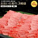 【ふるさと納税】おおいた和牛3種盛(カルビ・ロース・赤身)(...