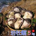【ふるさと納税】延岡産天然岩牡蠣(生食用)5kg(中)(20...
