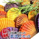 【ふるさと納税】貝類Aセット