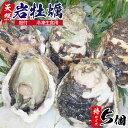 【ふるさと納税】延岡産天然岩牡蠣(冷凍生食用)特サイズ5個(2020年4月から発送開始)