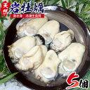 【ふるさと納税】延岡産天然岩牡蠣(冷凍剥き身生食用)(202...