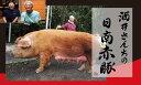 【ふるさと納税 酒井さんちの日南赤豚