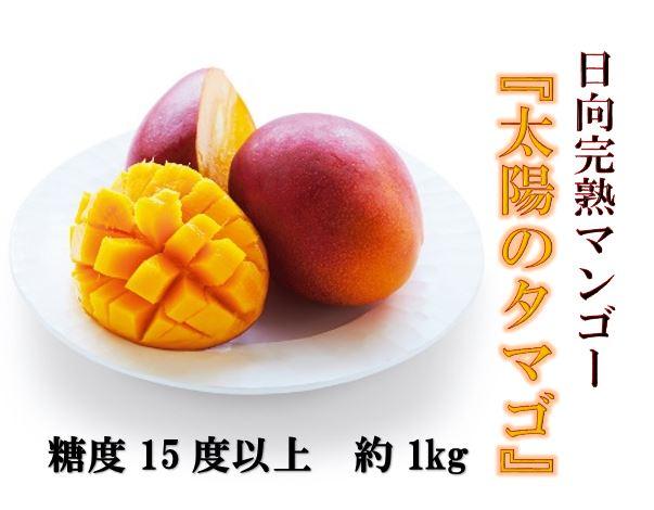 【ふるさと納税】日向完熟マンゴー(太陽のタマゴ)約1kg