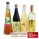 【ふるさと納税】神楽酒造・正春酒造の人気リキュール4種セット
