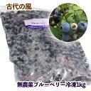 【ふるさと納税】『古代の風』無農薬ブルーベリー冷凍1kg
