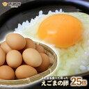 【ふるさと納税】えごまの卵 25個
