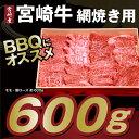 【ふるさと納税】宮崎県産 肉厚 宮崎牛網焼き用約600g