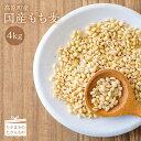 【ふるさと納税】宮崎県産特選 もち麦(4kg) 食物繊維が白...