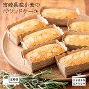 【ふるさと納税】宮崎県産特選 宮崎県産小麦のパウンドケーキ定...