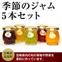 【ふるさと納税】 季節のジャム5本セット(100g×5個)