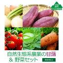 【ふるさと納税】自然生態系農業の甘藷&野菜セット