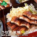 ショッピングうなぎ 【ふるさと納税】うなぎ蒲焼(中サイズ)2尾 鰻肝&鰻骨せんべい付き