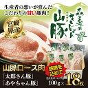 【ふるさと納税】<宮崎県産 森の奥のきじょん山豚 山豚ロース肉 100g×18枚> 合計1.8kg※
