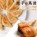 【ふるさと納税】餃子の馬渡<馬渡のもっちり餃子40個と手羽餃...