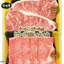 【ふるさと納税】<宮崎牛 サーロインステーキ用460gとリブ...