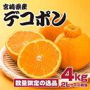 【ふるさと納税】予約受付開始 南国宮崎のデコポン 2Lサイズ...