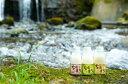【ふるさと納税】あまざけ+乳酸菌 『ちほまろ』(3種×500g) 3本セット 無添加 無加糖 ノンアルコールドリンク 送料無料
