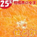 【ふるさと納税】宮崎県産 柑橘の女王せとか 25玉入り 平成...