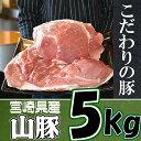 【ふるさと納税】<きじょん山豚モモブロック5kg>※平成30...