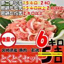 【ふるさと納税】今だけ1キロ増量<宮崎県産豚肉・宮崎県産鶏と...
