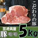【ふるさと納税】<宮崎県産豚肉モモブロック5kg> もも 豚肉 特産品 宮崎県 新富町 【冷凍】