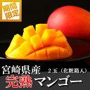 【ふるさと納税】期間限定<みやざき完熟マンゴー 2玉 化粧箱...