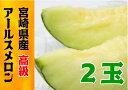 【ふるさと納税】南国 宮崎県産 高糖度アールスメロン 2玉 ...