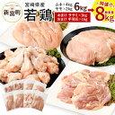【ふるさと納税】宮崎県産 若鶏セット8kg 今だけ増量 鶏肉 鳥肉 もも肉 2kg むね肉 4kg ささみ 1kg 手羽元1kg 送料無料 ※平成31年4月末迄に順次出荷予定
