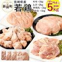 【ふるさと納税】宮崎県産 若鶏セット 合計5kg 鶏肉 鳥肉...