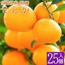 【ふるさと納税】<予約受付>宮崎県産 柑橘の女王せとか 25玉入り ※2020年3月発送開始 ※収穫によるズレあり みかん ミカン 蜜柑 フルーツ