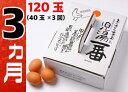 【ふるさと納税】児湯養鶏自慢の卵 計120個 (40個×3回) 3ヶ月定期便 冷蔵 送料無料 たまご 国産