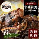【ふるさと納税】宮崎地鶏 鶏炭火焼きセット(6パック+ミニ1...
