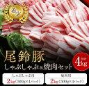 【ふるさと納税】(希少)尾鈴豚 しゃぶしゃぶ&焼肉セット...