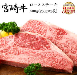 【ふるさと納税】《肉》宮崎牛ロース<strong>ステーキ</strong>(250g×2枚)&合挽きハンバーグ(100g×4個)セット《合計900g》