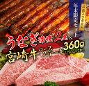 【ふるさと納税】うなぎ蒲焼2尾&宮崎牛ロースステーキ2枚セット